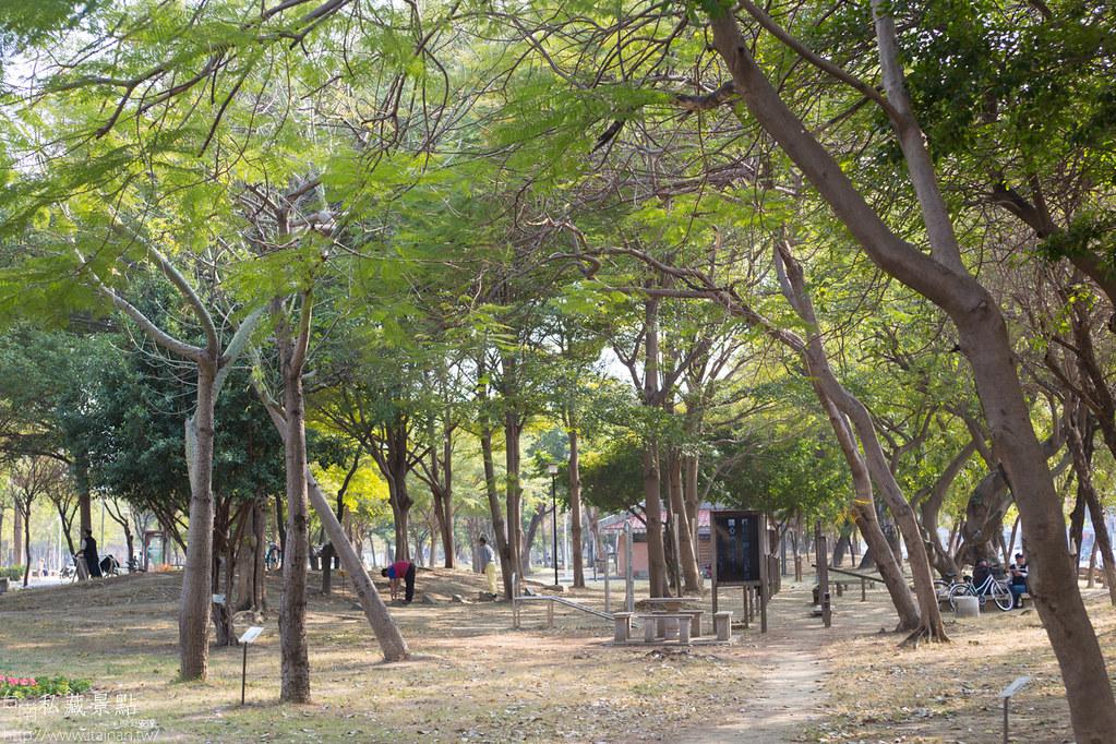 台南私藏景點-水萍塭公園 (19)