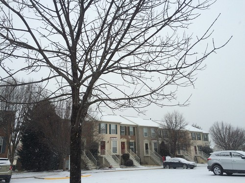 Snowy townhouses