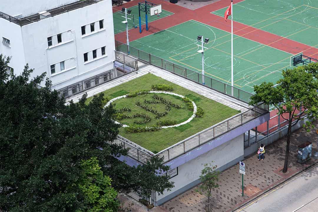 九龍工業學校的綠化平台。
