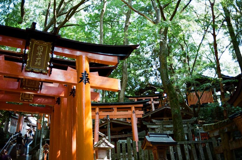 伏見稻荷 京都 Kyoto, Japan / Kodak ColorPlus / Nikon FM2 我挑戰開始走稻荷山,走過前半段的千本鳥居後,接下來就是不斷的上坡。  路走的越遠,身邊的遊客就越來越少。  Nikon FM2 Nikon AI AF Nikkor 35mm F/2D Kodak ColorPlus ISO200 0993-0005 2015/09/29 Photo by Toomore