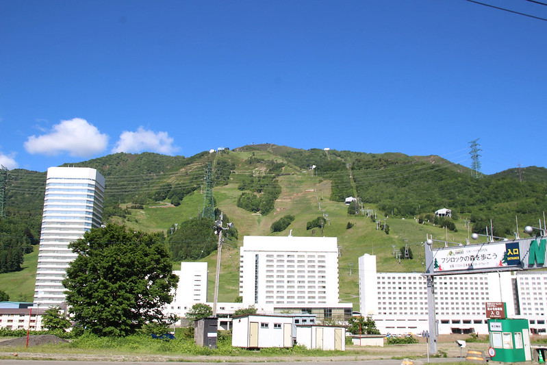 20150607-仙ノ倉山Y-0011.jpg