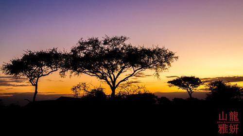 africa landscape tanzania safari mara tz serengetinationalpark katikaticamp seroneraregion tzday03 katikatitentedlodge africanwildcatsexpeditions
