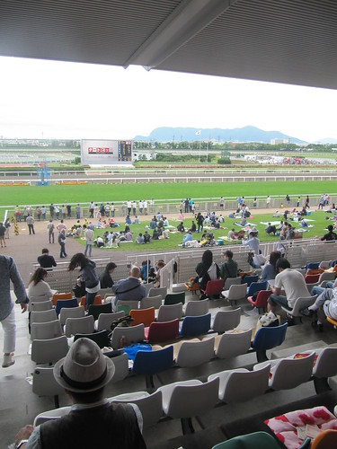 函館競馬場の一般席の最上部