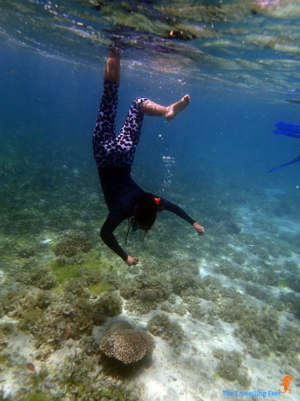 snorkelling at Terra Manna Resort