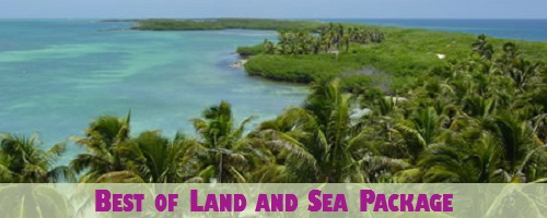 The Best of Land and Sea Package (3 tours in two days!)