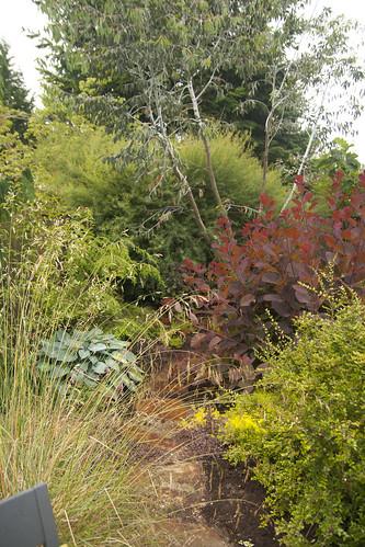 Plant Passion Garden 5