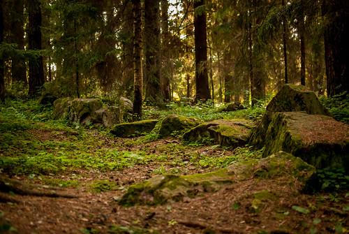 stone forest finland medieval kivi metsä keskiaika ulvila satakunta liikistö