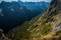 Sinbad Sanctuary, Llawrenny Ranges, Northern Fiordland  photo James T. Reardon-3662