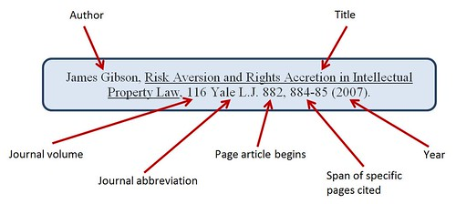 Law Review Article Citation Example