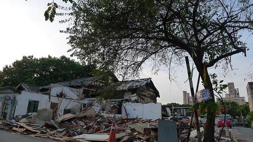遭到覬覦的老梅樹,後方原為「梅樹爺爺」的家