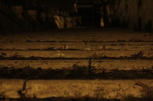 punti di vista: scalinata tra la strada e  la banchina del tevere