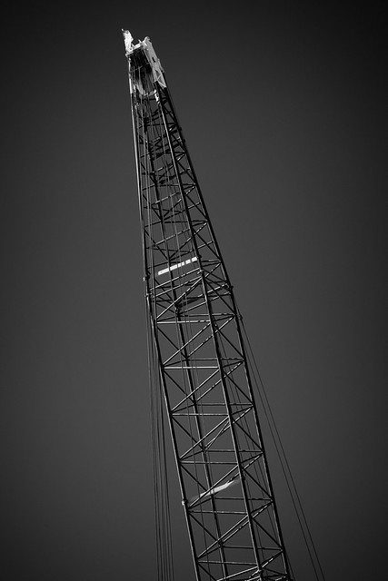 Flag-Topped Crane