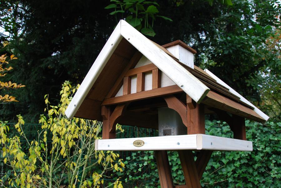 Hydrangea and the bird house