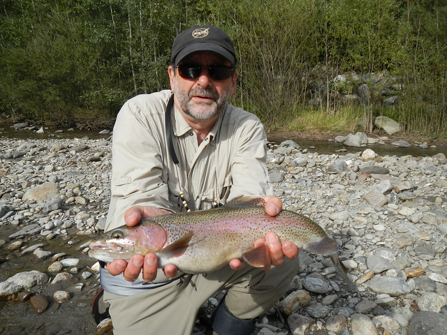 Alto Adige, Passer River Rainbow Trout
