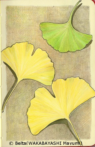 2013_12_10_ginkgo_leaves_01_s by blue_belta