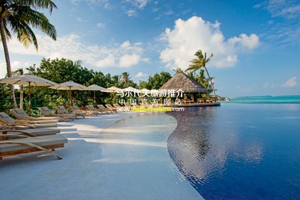 丽世酒店(Lux* Maldives)泳池吧