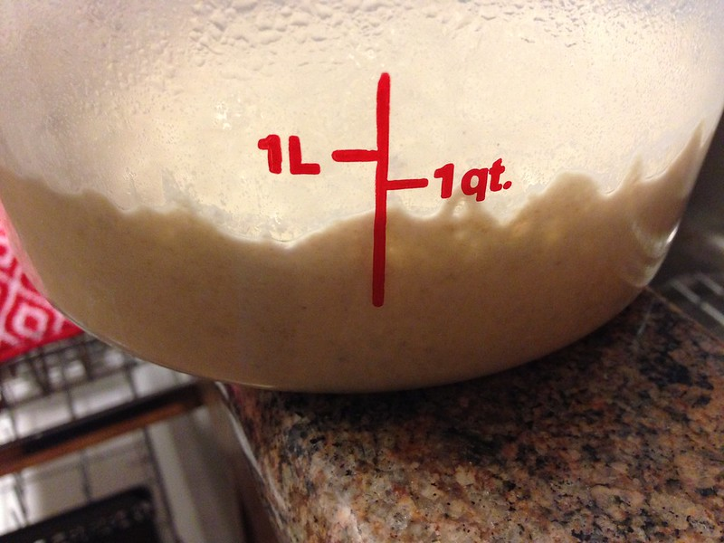 20 hour old leaven