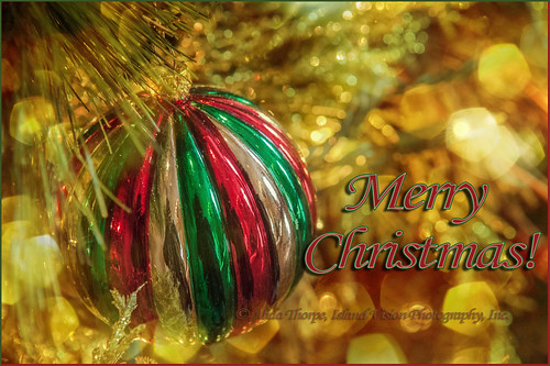 Merry Christmas! by Alida's Photos