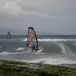 Wind surfer, Maui
