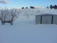 Buried shed in December