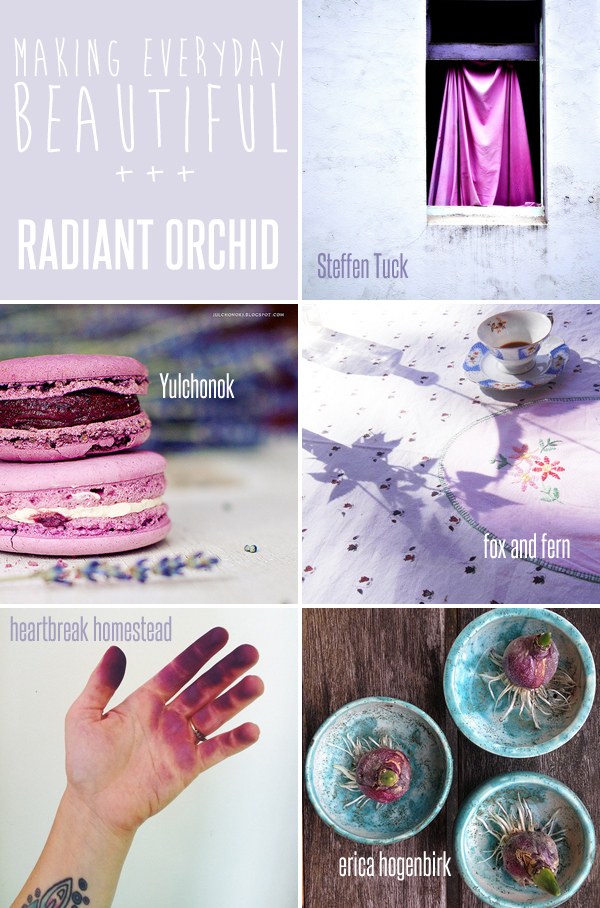 making everyday beautiful : radiant orchid | Emma Lamb