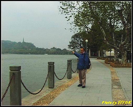 杭州 西湖 (其他景點) - 050 (湖濱路的湖畔)