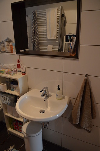berlin apartment_bathroom ikea molger mirror towel hook and shallow storage