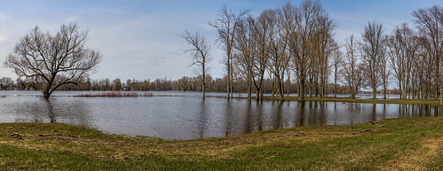 flooding mississippiriver riversidepark 100xthe2014edition 100x2014 image28100