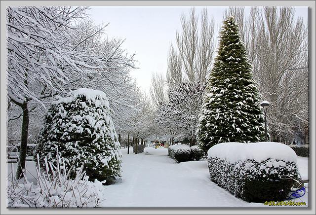 14 Primera nevada en Briviesca 2015