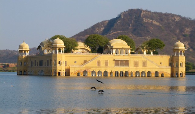 India - Jaipur - Jal Mahal