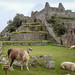 Machu Picchu by J. Benedito