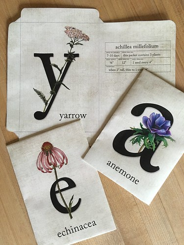 Lovrien,      Meysha Typography_Seed Packets_2