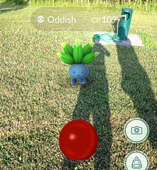My #cousin @cbucuren and I at the #park with a #lure going playing #pokemongo. #pokemon#oddish#park