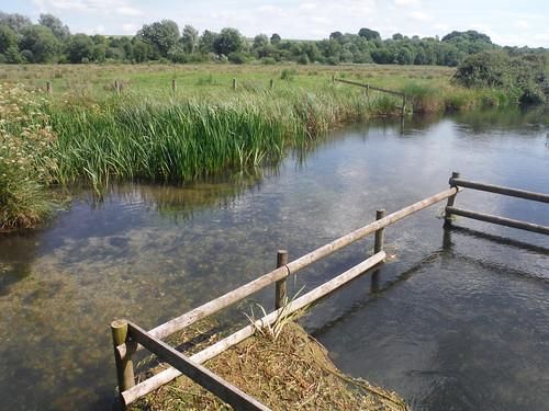 Stream in Test Meadows