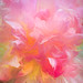 Pretty in Pink Peony - 2nd Place Altered/Composite - Kit Horton
