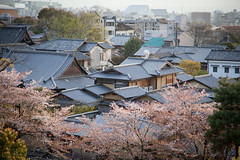 Kyoto Rooftops
