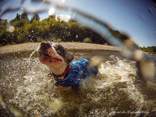 GoPro Under Water-6306