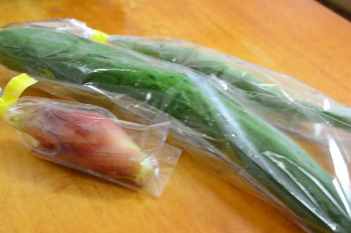 Kit Oisix (キット オイシックス)野菜