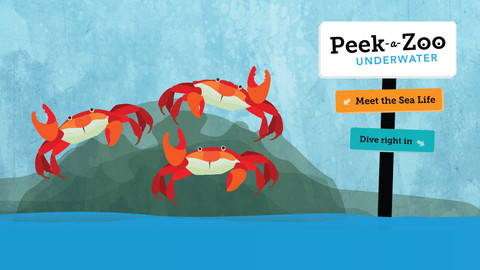 Peek-A-Boo Underwater - iPad App For Toddlers - Kaelah Bee