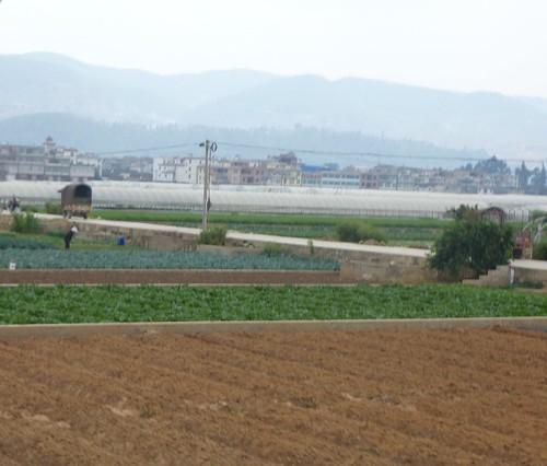 Yunnan13-Yuanyang-Kunming-Route (140)