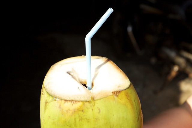 Coconutdrink