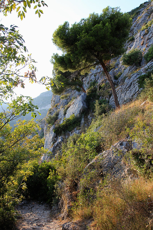 31-eze-cliff2