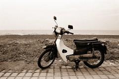 金旺90-海線訓車一日遊