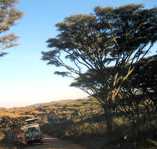 Unterwegs nach Ngorongoro