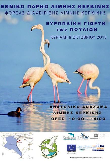 Ευρωπαική Γιορτή των πουλιών 2013