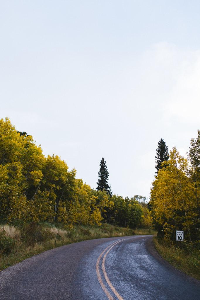 Montana2013_-31