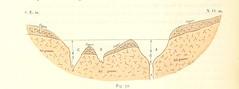 """British Library digitised image from page 196 of """"Voyage d'Exploration dans les bassins du Hodna et du Sahara"""""""