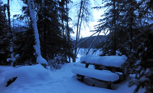 Picnic table covered in snow, Sunrise Island, Sixmile River, hemlock trees, mid-winter, Kenai Pennisula, Alaska by Wonderlane