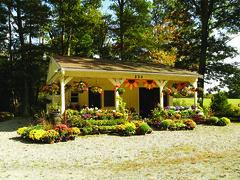 Stephanie's Perennials - Lakeville