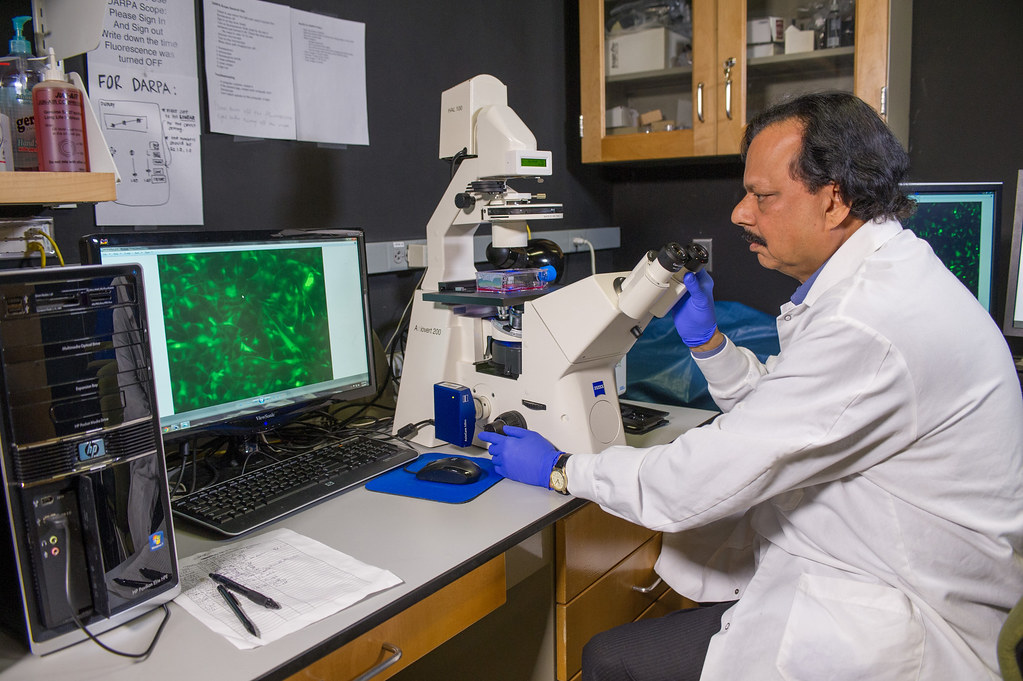 Researchers hijack cancer migration mechanism to 'move' brain tumors